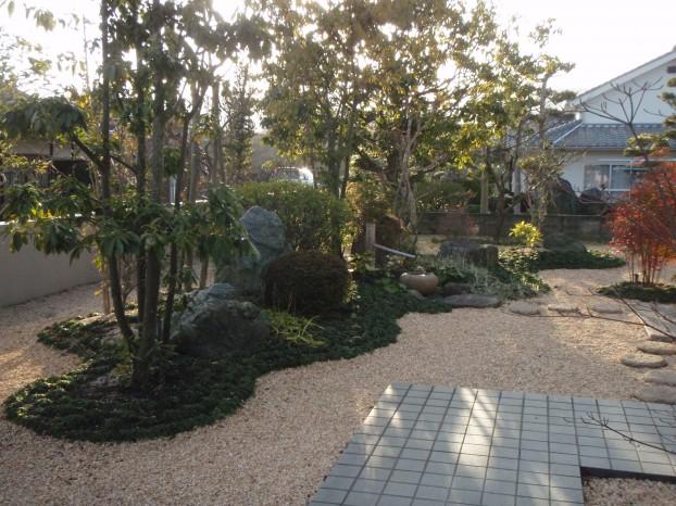 スギゴケ タマリュウ 本格和風庭園